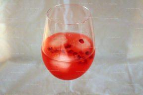 Cocktail met granaatappel en gin